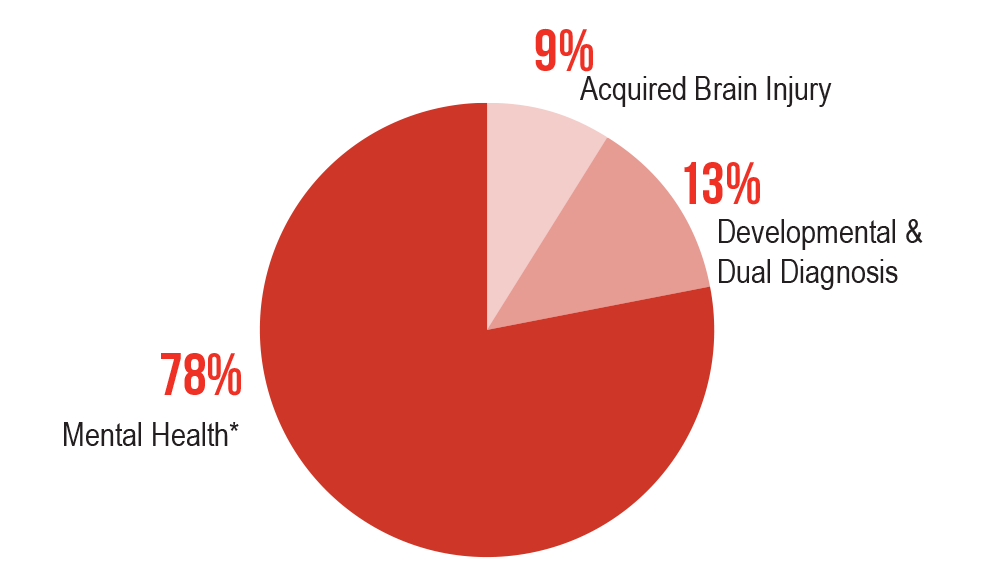 Pie chart showing 78% mental health, 13% developmental & Dual Diagnosis and 9% Acquired Brain Injury